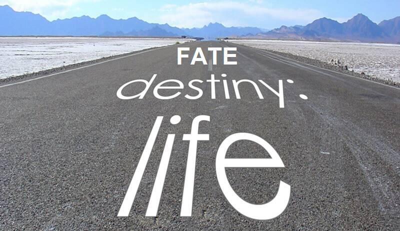 Fate & Destiny